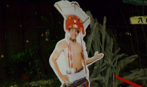 アミ族ショーの画像1