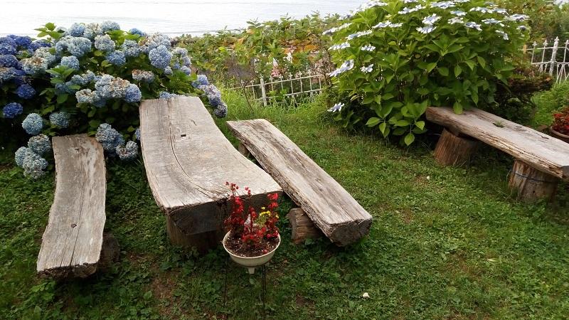 モーリエのベンチ