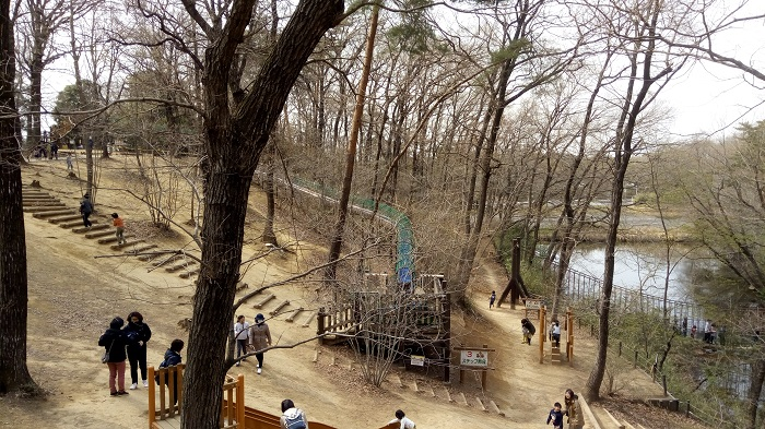 森林公園、冒険コースの様子2