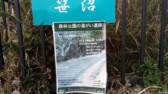 森林公園、笹沼