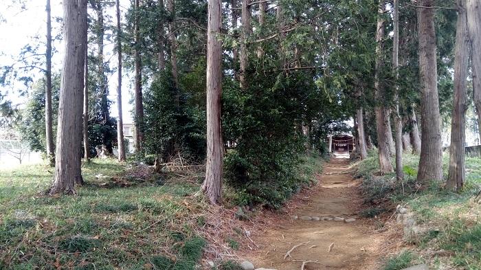 八幡神社の通り道