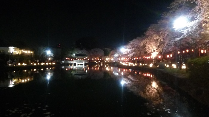 東松山夢灯路(上沼公園2)