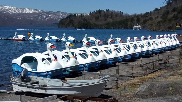 十和田湖、アヒルのボート